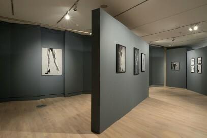 """Blick ins Tanzmuseum (Ausstellung """"Gert Weigelt. Autopsie in Schwarzweiß"""", 2018)"""