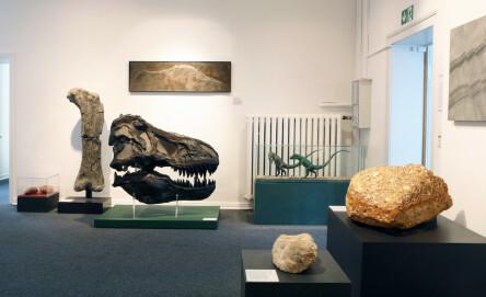 Mineralien-Museum, Innenansicht