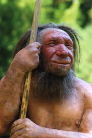 Neanderthalfigur Mr. N